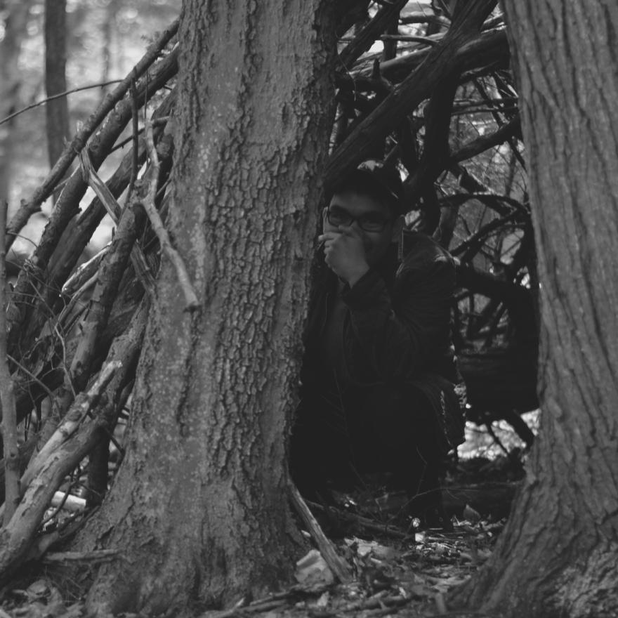 teepeesandtrees